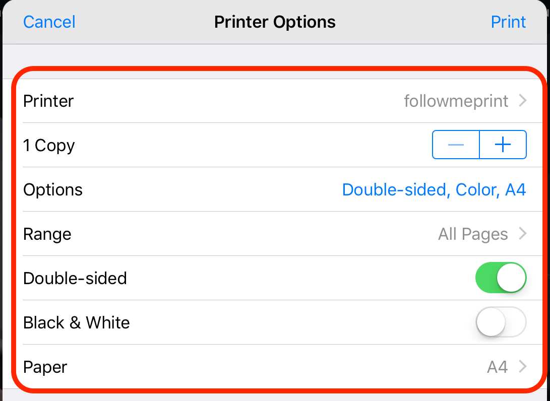Printer_Options.PNG