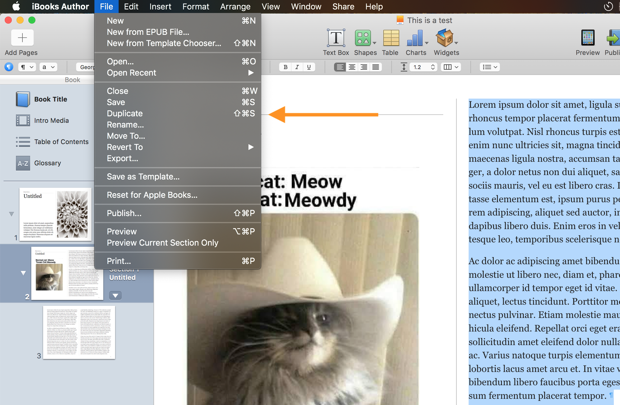 Moving or Backing Up an iBooks Project – Support @Blake